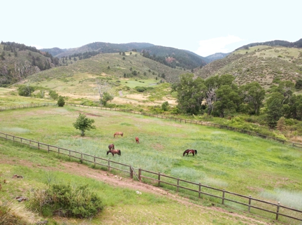 Blue Horse Ranch